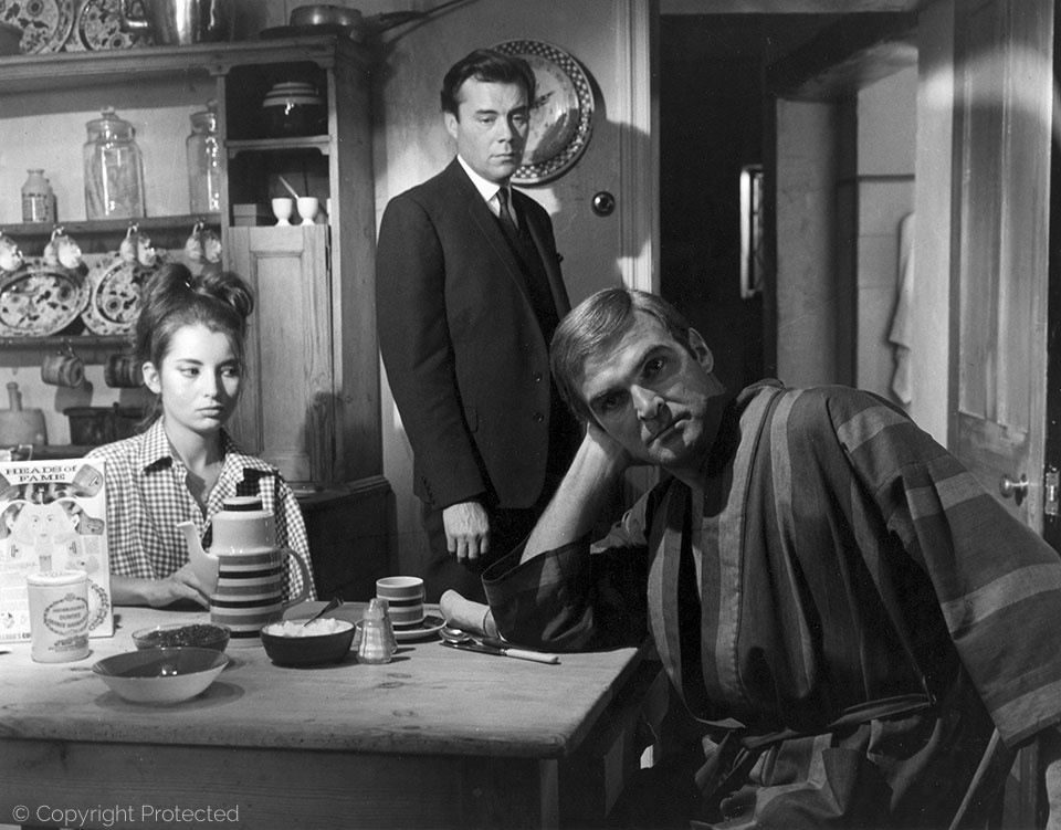 with Jacqueline Sassard and Stanley Baker, Accident (1967)