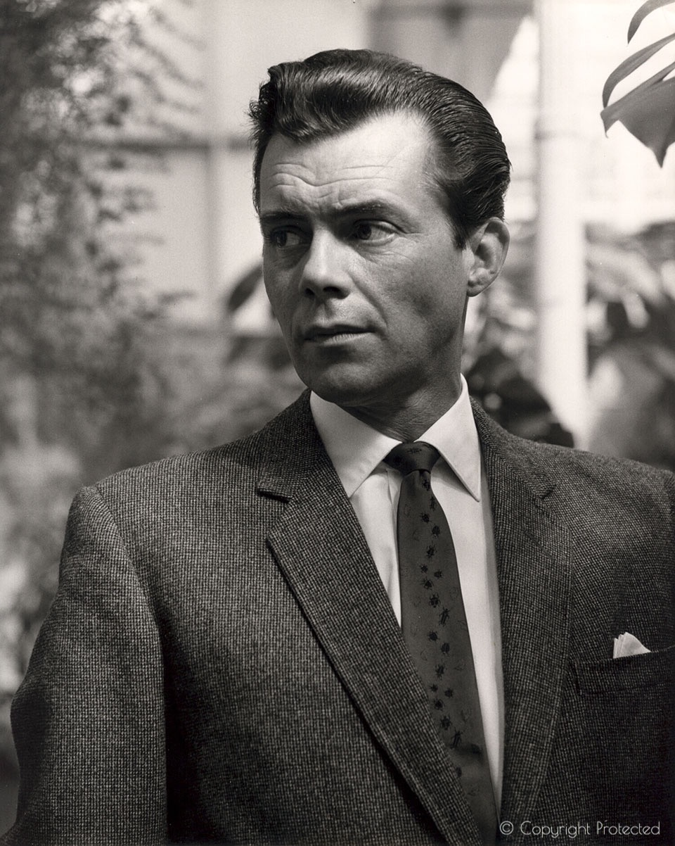 dirk bogarde cast a dark shadow