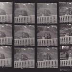 Ann Skinner - contactsheet - 3