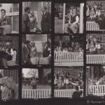 Ann Skinner - contactsheet - 10